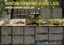 Ugroženi stanovnici rijeke Ljute