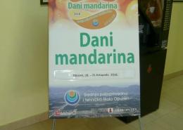 Dani mandarina