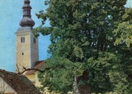 Gupčeva lipa u drugoj polovici XX. st.