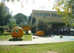 Dani mandarina u Opuzenu