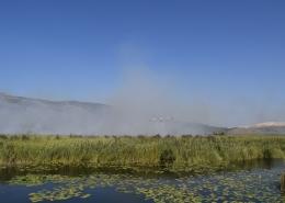 Požar u posebnom ornitološkom rezervatu Prud
