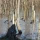 Zimsko prebrojavanje ptica zimovalica delte Neretve