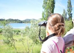 Dan Europe Baćinska jezera