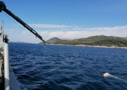 Radionica o otpadu u moru i njegovom utjecaju na bioraznolikost u morskim zaštićenim područjima